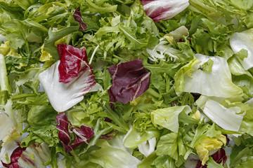 fresh mixed lettuce leaves background