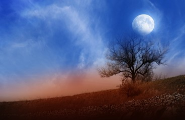 Full moon . Dramatic nature background . Moon sky and clouds . Beautiful clouds .   moon . sky of a decline