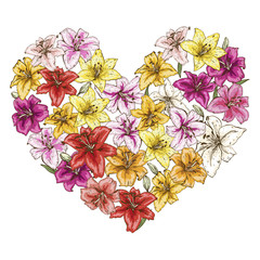 Heart of colorful lilies isolated on white background. Vector illustration.