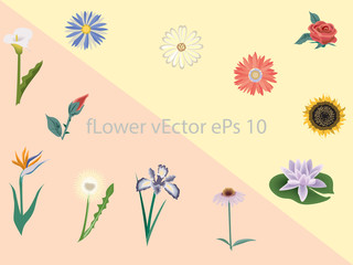 Flowers vector illustration. Manual composition for Mother's Day, wedding, birthday, Easter, Valentine's Day. Concept beautiful for electronic card background.