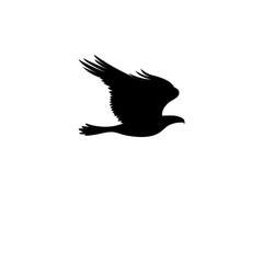 Vector sign eagle