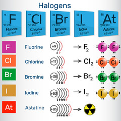 Halogens. Chemical elements of Periodic table