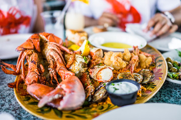 Macro closeup of lobsters and seafood on plate with tartar sauce
