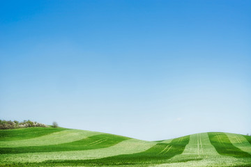 Beautiful summer landscape background , outdoor nature background for a Web site