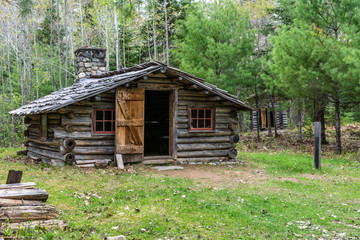 Lone Log Cabin in the forest with the door open and green grass