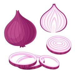 Red onion illustration set