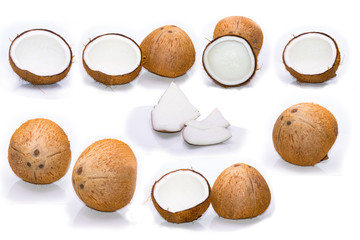 Coconuts on white background. Collection.