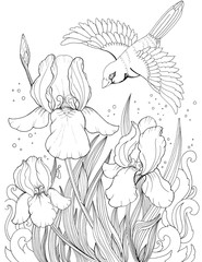 Flying bird over iris flower, drawing of flowers and birds, tattoo