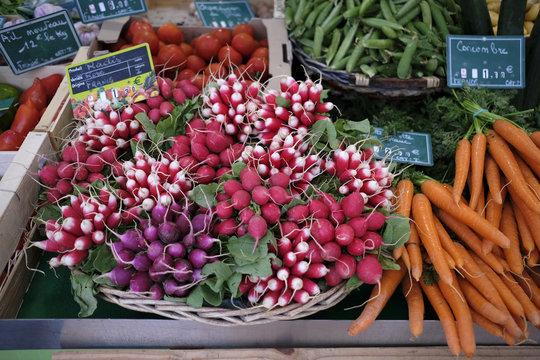 radis et carottes