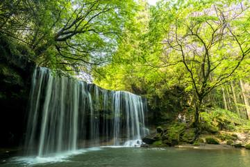Fototapete - 小国町の鍋ケ滝