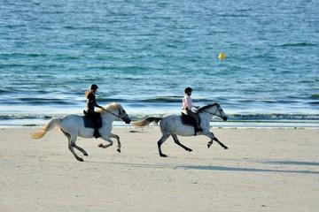 Des chevaux s'entrainent sur une plage de Bretagne