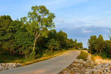 Tropical landscape with empty road and green roadside
