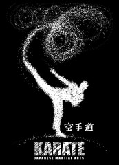 Silhouette of a karateka doing standing side kick .Vector graphics composed of particles.