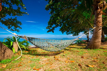 Thailand. Sea, hammock