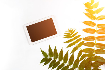 Styled natural eco home office. Tablet with copy space on white background. Product introducing Top view, flat lay. Sun flare