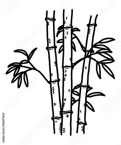 Bamboo Cartoon Vector And Illustration Black And White Hand