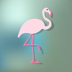 Flamingo pink on a blue bokeh background.