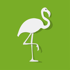 Flamingo white on a green background.