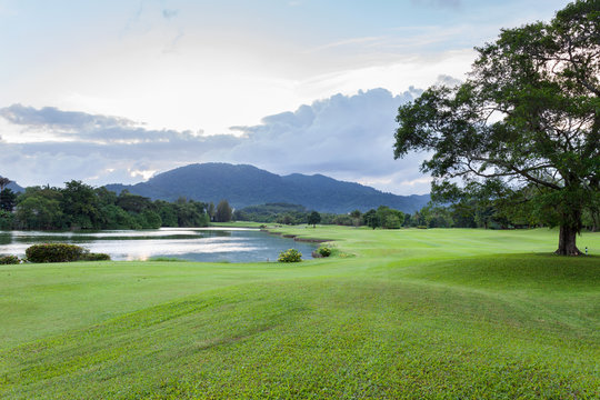 Golf course green grass field with mountain tropical forest.