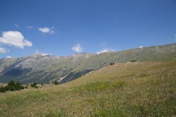 Monte Portella, Pizzo Cefalone, panorama, Parco Nazionale Gran Sasso e Monti della Laga, inizio dell'estate