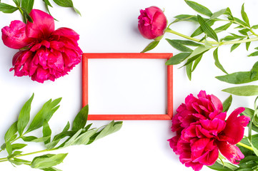 Red peony flowers and empty photo frame on white