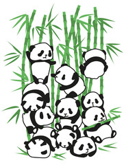 Panda bear Illustration children, young, set. With bamboo. Funny drawing for children and young.