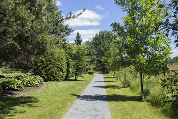 Summer garden at Rouyn with vibrant and green color