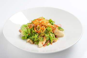 Warm salad with squid, vegetables with grape sauce. White background, menu concept.