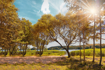 Bright colorful autumn. Landscape of colorful golden autumn on bright sunny day on lake