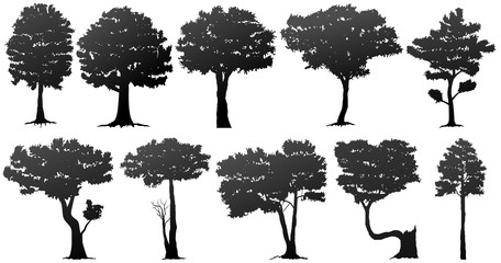 set of tree silhouette