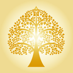 golden bodhi tree