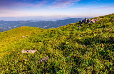 hillside with boulders in Carpathian mountains in summer