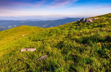 hillside with boulders in Carpathian mountains in summer