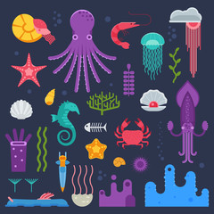 Marine invertebrates, mollusks and jellyfishes set. Ocean exotic underwater animals and deep sea creatures collection in flat design.