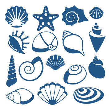 Sea shell vector silhouette icons