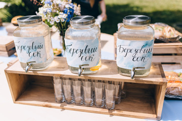 Close up of picnic party in park drink table with large pitcher and glass bottles filled with ice cold pink lemonade and fresh lemons, pink swirled straw, spoons and sign on pink gingham tablecloth