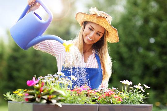 Woman watering plants outside in summer
