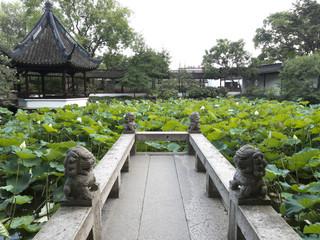 Zuibaichi chinese garden in Songjiang, Shanghai