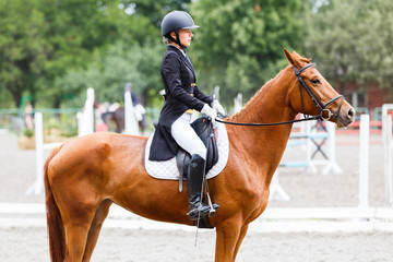 Young rider girl on sorrel horse at dressage equestrian competition