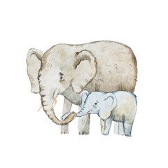 Watercolor drawing of elephant family, mother and calf