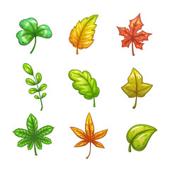 Cartoon colorful vector leaves set.