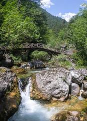 Mountain river among stones
