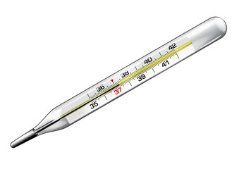 Medical thermometer close-up in vector