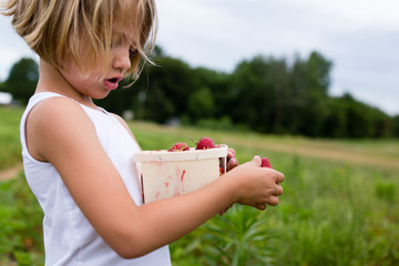Young girl holding box of freshly picked strawberries
