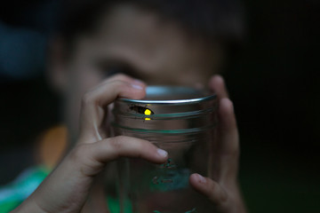 Child holding jar with firefly inside, close-up