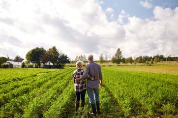 happy senior couple at summer farm Fototapete