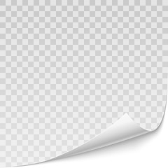 Vector realistic curved corner of white paper with shadow isolated on the transparent background.
