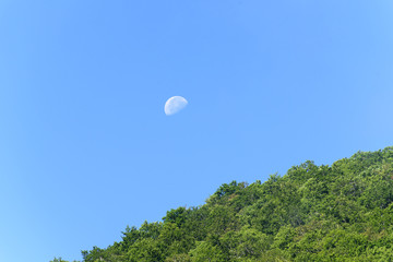 Clear blue sky and has half moon in daytime