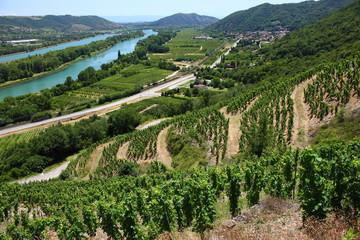 Vignobles de la Vallée du Rhône, Rhône Alpes Auvergne France