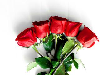 Cerca Immagini Rosa Rossa Aperta